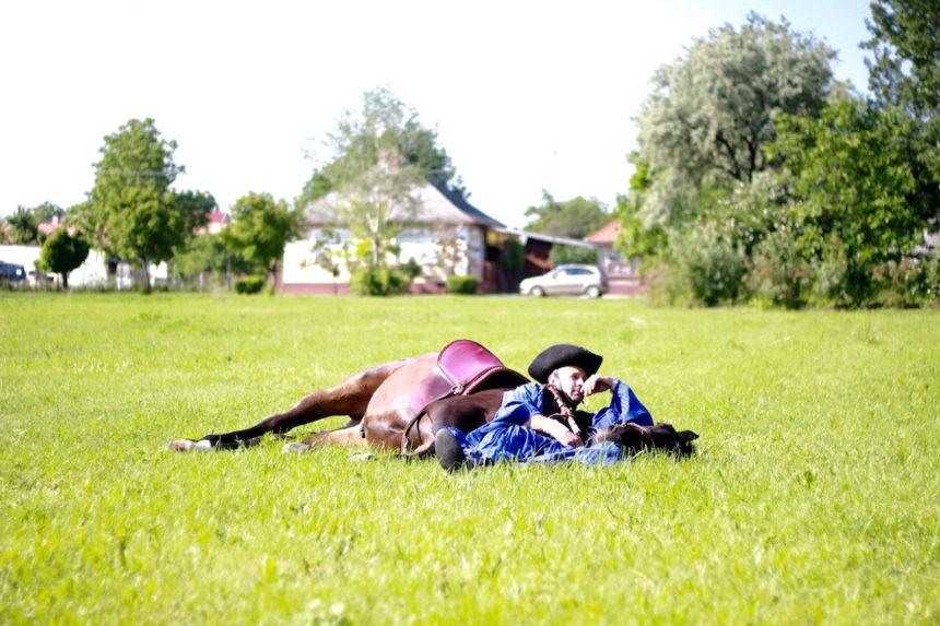 Csikós paardenshow paarden debrecen poesta horse horses paard