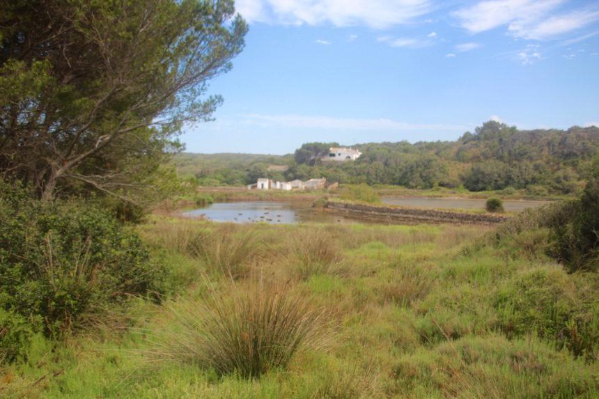 S'Albufera Menorca natuur park