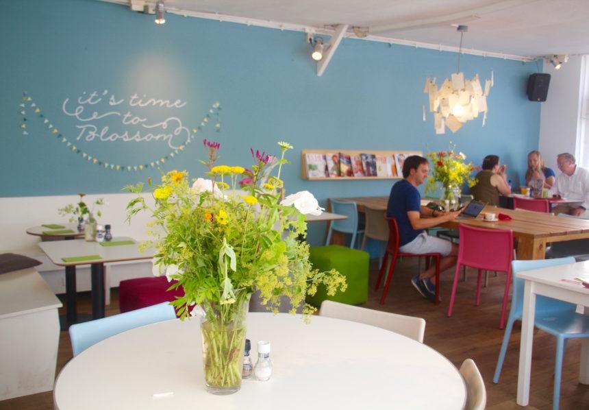 Café Blossom Zeeheldenkwartier Den Haag