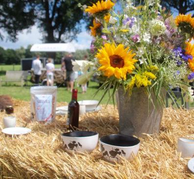 Verrukkelijk Vechtdal: Puur Picknick lifestyle