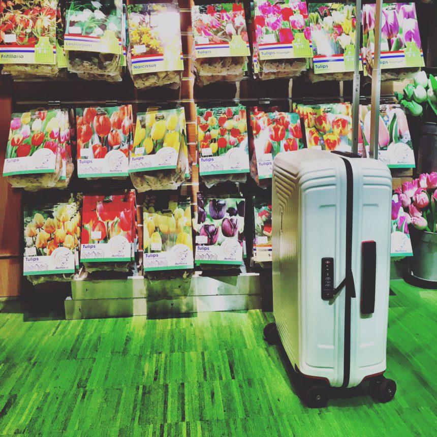 Weer op reis schiphol tulpen souvenir amsterdam koffer bagagekoffer bagageonline samsonite