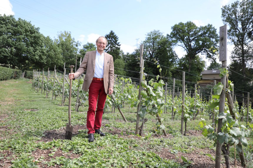 Domaine septem triones Chaudfontaine biologisch-dynamische wijn