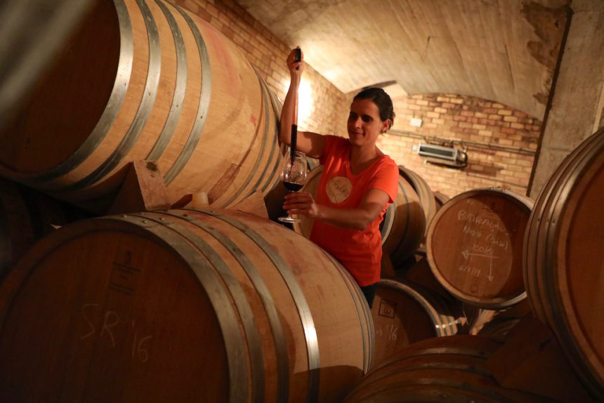 Can Majoral Mallorca biologische wijn