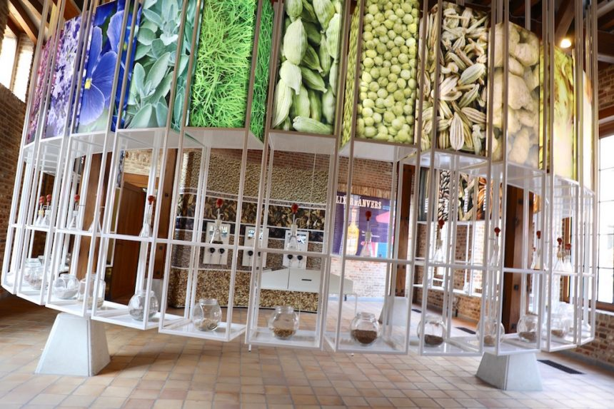 Jenevermuseum Hasselt 48 uurs kaart