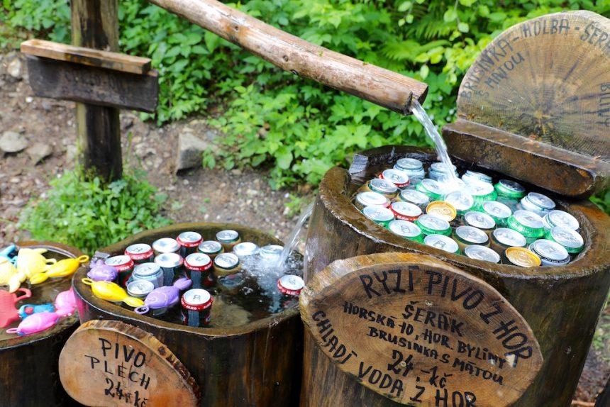 Forest bar honesty bar tsjechie czechia