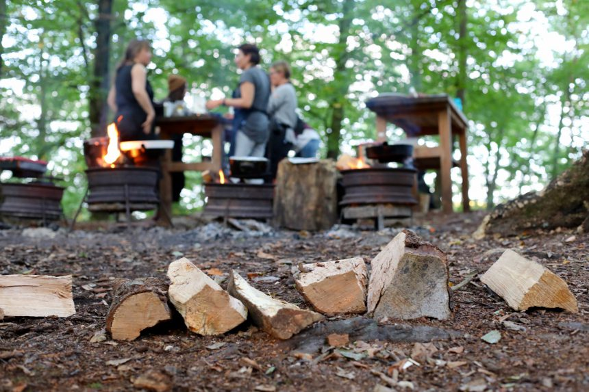 Pure Food Camp in Zweden tips
