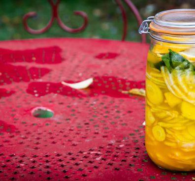 Bieten fermenteren uit Verrot gezond boek