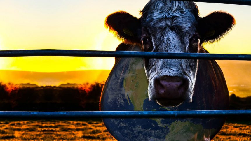 Cowspiracy food documentaires Netflix